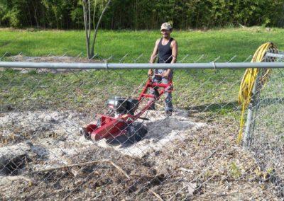 tree_stump_grinding_handyman_austin