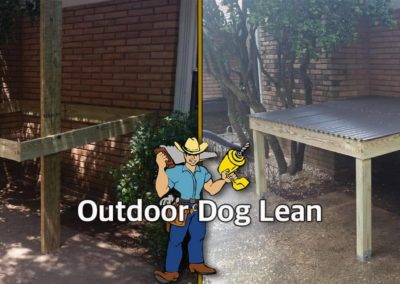 Dog Lean_Before and After
